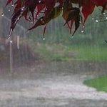 سامانه بارشی از روز یک شنبه فعال می شود